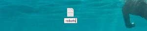 О создании для WordPress файла robots.txt
